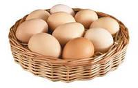 Пищевой Ароматизатор Яйцо 1 л