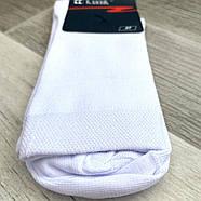 Носки мужские хлопок с сеткой Класик Черкассы, арт 19В-112, 29 размер, ассорти, 05503, фото 8