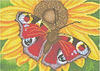 АМП-107. Набір алмазної мозаїки Метелик павиче око.