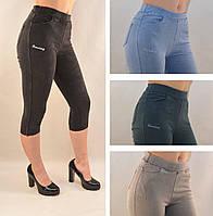 Бриджи женские джинсовые в ярких расцветках Капри женские цветные ( S\M & L\XL ) Пудра, S\M