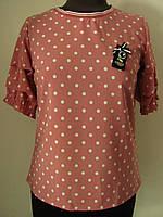 Молодежная блуза летняя цвета пудра в горох с коротким рукавом (р-р.42,44,46) Код 1856М