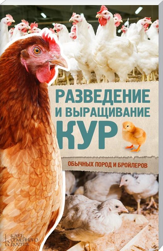 Разведение и выращивание кур обычных пород и бройлеров
