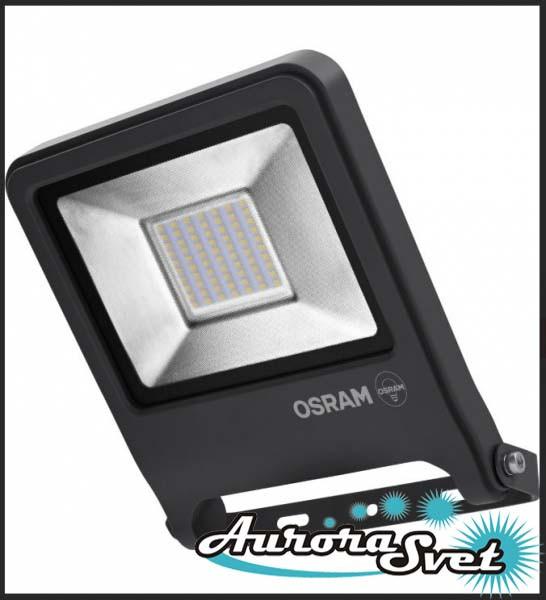 Светодиодный прожектор OSRAM ENDURA 50W ЧЁРНЫЙ. LED прожектор.