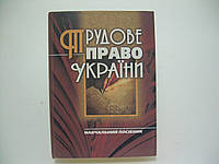 Пилипенко П.Д. Трудове право України (б/у)., фото 1