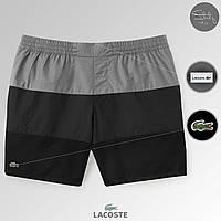 Шорты плавательные мужские летние стильные трехцветные Lacoste, цвет серый-графит-черный