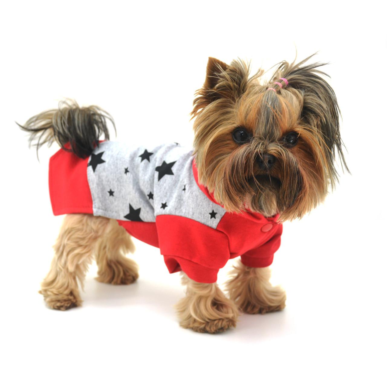 Батник кофта для собак сірий+червоний міні 21х27 см