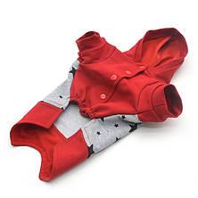 Батник кофта для собак сірий+червоний міні 21х27 см, фото 3