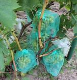Сетка защитная для винограда на 5 кг, 29х40 см (упаковка 50 шт), фото 5