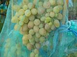 Сетка защитная для винограда на 5 кг, 29х40 см (упаковка 50 шт), фото 4