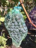 Сетка защитная для винограда на 5 кг, 29х40 см (упаковка 50 шт), фото 3