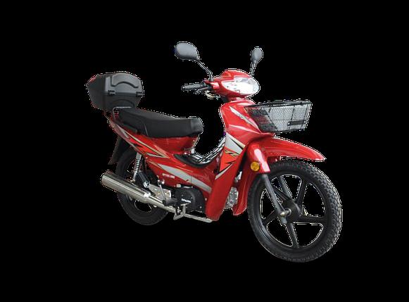 Мотоцикл Spark SP110С-3WQ, фото 2