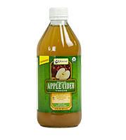 Натуральный органический Яблочный Уксус Vitacost c мякотью (473 мл)