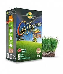 ЭЛИТНАЯ серия газонной травы жаростойкая CALIFORNIA 1кг