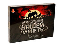"""Настольная игра Danko Toys """"Животные нашей планеты"""" (DTG29)"""