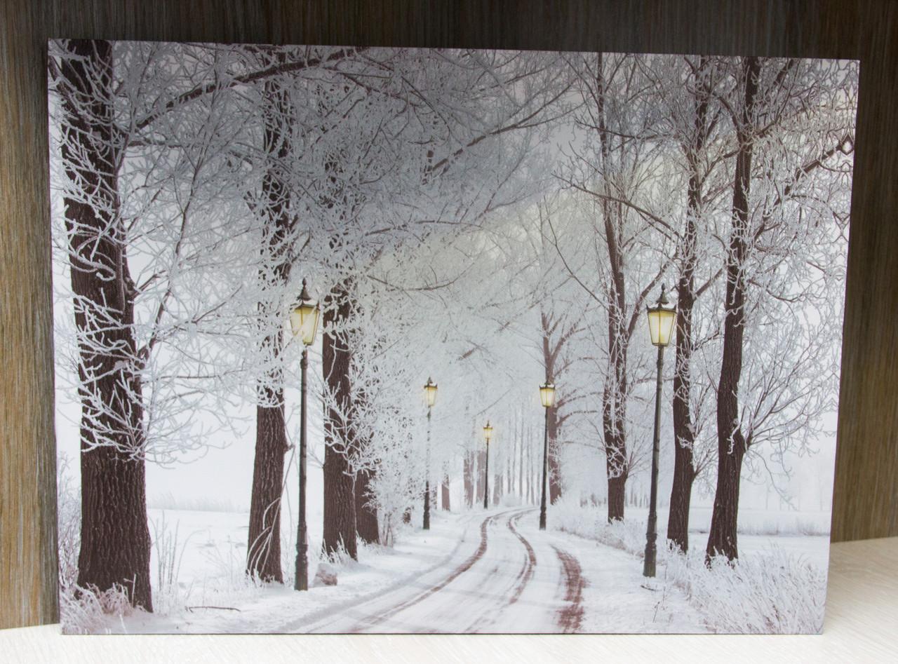 Светящаяся картина зимний лес с уличными фонарями и заснеженной тропой, 30х40 см (940157)