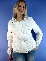 Женская весенняя, летняя ветровка Ylanni 957, XL-6XL (куртка: 100% хлопок) Ylanni, Janiсa, Mishele, Symonder