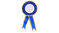 Орден большой без надписи,синий (ваше фото / лого)