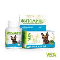 Фитомины для зубов и костей собак
