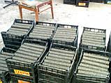 Паливні брикети з ударно механічного преса, фото 5