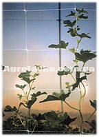 Сетка шпалерная цветочная 1,2м х 500м/яч.10х10см (Венгрия) белая