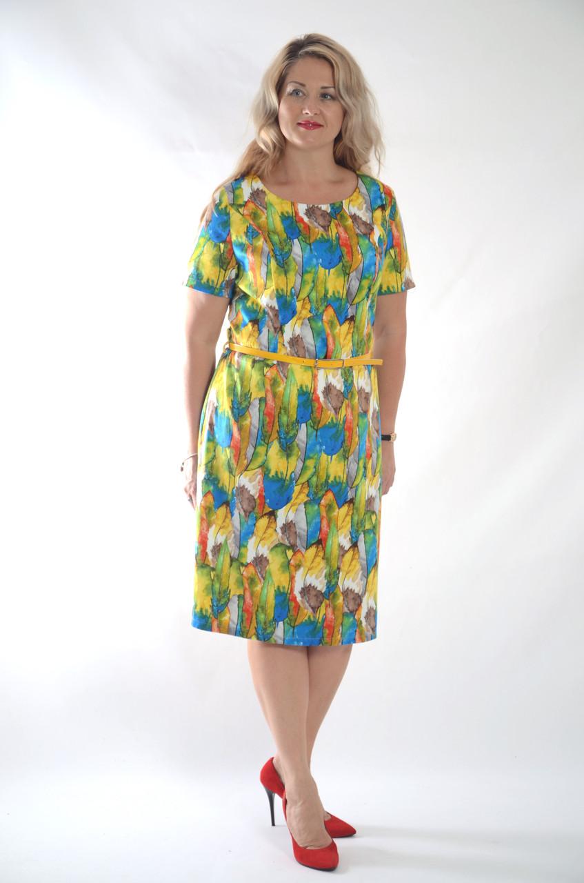 Деловое платье батал летнее хлопок Марокко Пл 105-6  батал 50-56