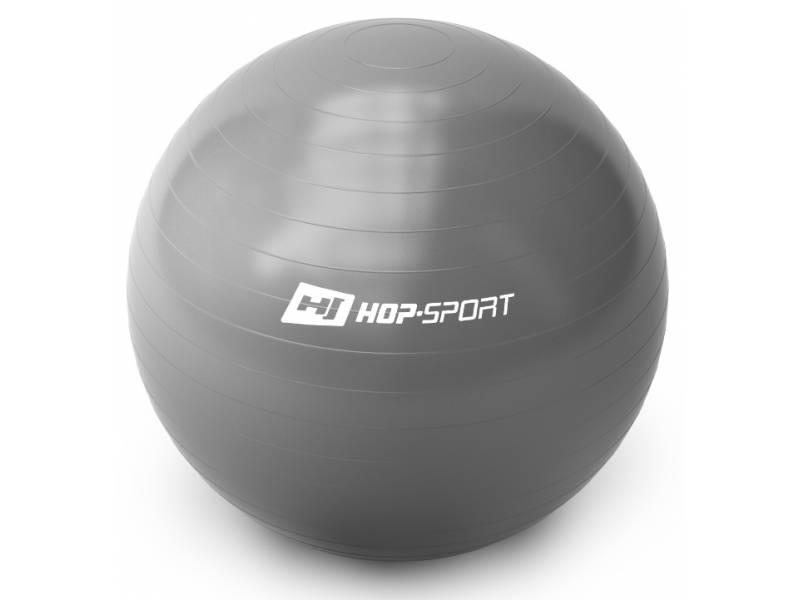 Фітбол Hop-Sport 65cm Silver + насос