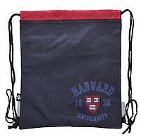 Сумка для взуття SB-10 Harvard