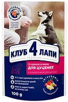 Клуб 4 Лапы с курицей в желе для щенков, 24 шт