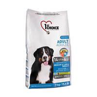 1st Choice ADULT MEDIUM & LARGE Breeds- корм для собак средних и крупных пород 15кг