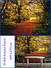 Фотообои Komar (Германия) 8-068