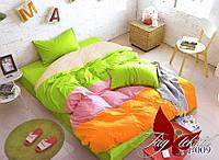 ТМ TAG Color mix APT009