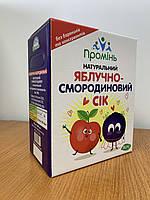 """Сок яблочно-смородиновый прямого отжима """"Проминь"""" 3л"""