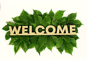 """Слово """"Welcome"""""""