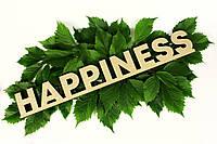 """Слово """"Happiness"""", LaserBox"""