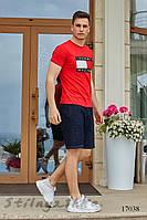Костюм футболка с шортами Томми красный с графитом