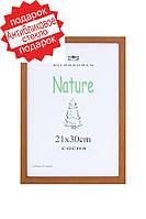 Фоторамка деревянная  цвет рыжее дерево 21*30(А4). Рамка для диплома.