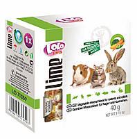 LoLo Pets lime for RODENTS  Минеральный камень с ОВОЩАМИ для грызунов и кроликов