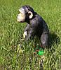 Садовая фигура Шимпанзе большой, фото 6