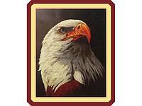 Набор для вышивки картины Гордый Орел 73х58см