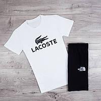 Мужская футболка Lacoste  c надписью лакоста хлопок (белая), ТОП-реплика