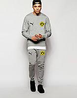 Мужской спортивный костюм Боруссия, Borussia, Puma, Пума, серый