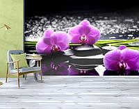 Фотообои бумажные гладь, Цветы, 200х310 см, fo01inB_fl11100