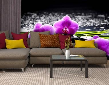 Фотообои текстурированные, виниловые Цветы, 250х380 см, fo01inV_fl11100
