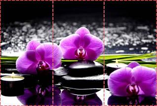Фотообои текстурированные, виниловые Цветы, 250х380 см, fo01inV_fl11100, фото 2