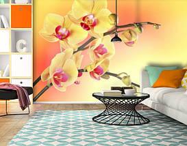 Фотообои бумажные гладь, Цветы, 200х310 см, fo01inB_fl12070, фото 3