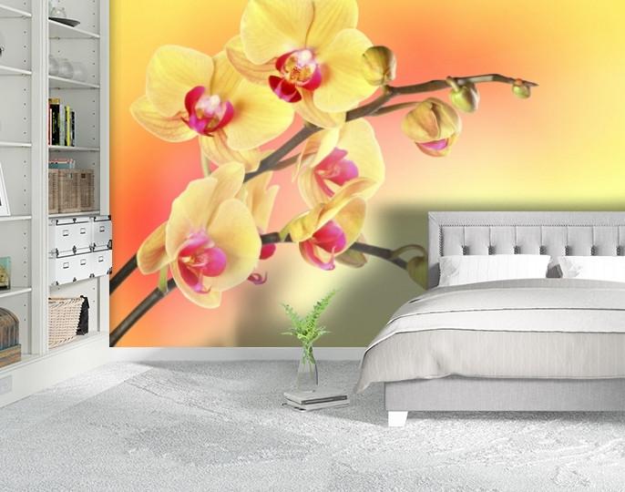 Фотообои текстурированные, виниловые Цветы, 250х380 см, fo01inV_fl12070