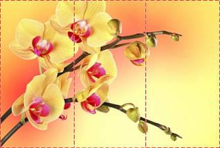 Фотообои текстурированные, виниловые Цветы, 250х380 см, fo01inV_fl12070, фото 2