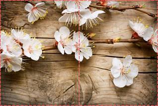 Фотообои бумажные гладь, Цветы, 200х310 см, fo01inB_fl102775, фото 2
