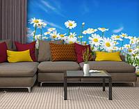 Фотообои текстурированные, виниловые Цветы, 250х380 см, fo01inV_fl102743