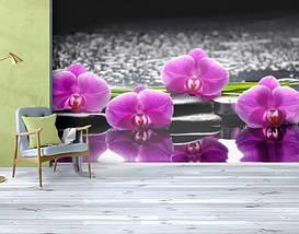 Фотообои бумажные гладь, Цветы, 200х310 см, fo01inB_fl103283, фото 3